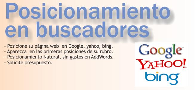 MI página web primera en google